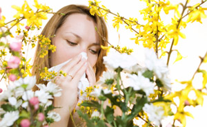 Sinus & Allergies